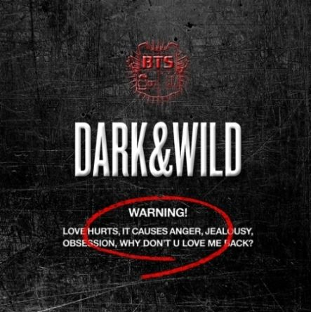BTS [CD] BTS 1st Album Dark & Wild 1 imageviewereshop_8